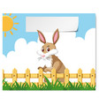 a bunny at farm banner vector image