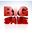 Big sale word template vector image