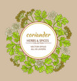 coriander frame vector image vector image