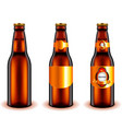 dark beer bottle design 3d realistic vector image vector image