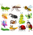 different kinds of insects on white background vector image