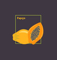 hand drawing papaya and sliced with seeds on dark vector image