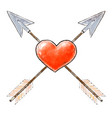 hand drawn red heart pierced by arrows design for vector image