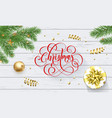 merry christmas golden decoration and calligraphy vector image vector image