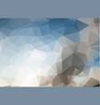 polygon abstract modern polygonal geometric vector image vector image