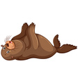 Sea lion flapping hands vector image vector image