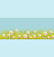 spring background with grass and flowers border vector image