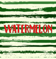 watermelon stripes seamless background vector image vector image