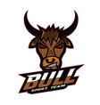 bull logo sport team vector image
