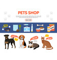 flat pet shop elements collection vector image vector image