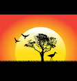nature and birds on sunset background vector image