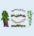 realistic lianas exotic botanical plants twisted vector image vector image
