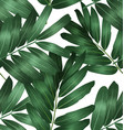 Seamless foliage pattern4