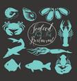set animal drawings on theme seafood vector image