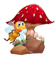 A bee near the red giant mushroom vector image vector image