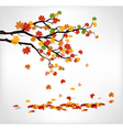 Autumn branch with falling leaves vector image vector image