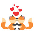 cute little foxes kissing valentines day card vector image
