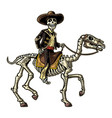 rider in mexican man national costumes vector image vector image