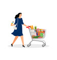 shopping full cart vector image