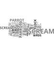 why do birds scream text word cloud concept vector image vector image