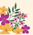 flowers leaves flourishes image vector image