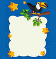 border template with toucan bird at night vector image vector image