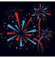 Firework at night vector image vector image