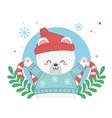 happy merry christmas card with bear teddy vector image vector image