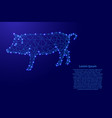 pig is a symbol of the new year 2019 from vector image vector image