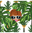 women face in jungle white background vector image