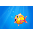 A colorful bubble fish under the sea vector image