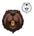beaver mascot rodent animal head with teeth vector image vector image