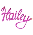 Hailey name lettering tinsels vector image
