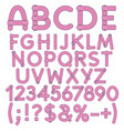 letters numbers and signs from pink fabric vector image vector image