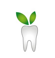 Logo for dentist- Teeth whitening vector image vector image