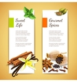 Spices banners vertical vector image vector image