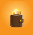 brown bitcoin wallet with coins isolated on vector image