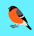 bullfinch bird flat style profile vector image vector image