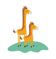 cartoon giraffe mom with calf over grass in vector image vector image