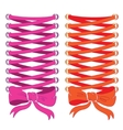 Corset lacing pink and orange Print on clothes vector image