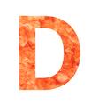 d land letter vector image