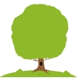 Green tree on meadow vector image vector image