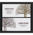 leafless tree ecology nature banner hand-drawn vector image vector image