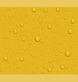 light beer transparent drops of dew on yellow vector image vector image