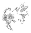line art humming and flower composition vector image vector image