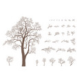 set branches and tree vector image vector image