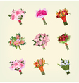 set many bouquets flowers vector image