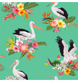 tropical nature seamless pattern with pelicans vector image vector image