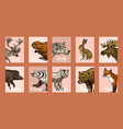 wild animals banners in vintage style forest deer vector image