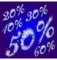 winter sale percents vector image vector image